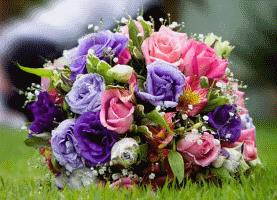 Blumenstrauss auf Wiese